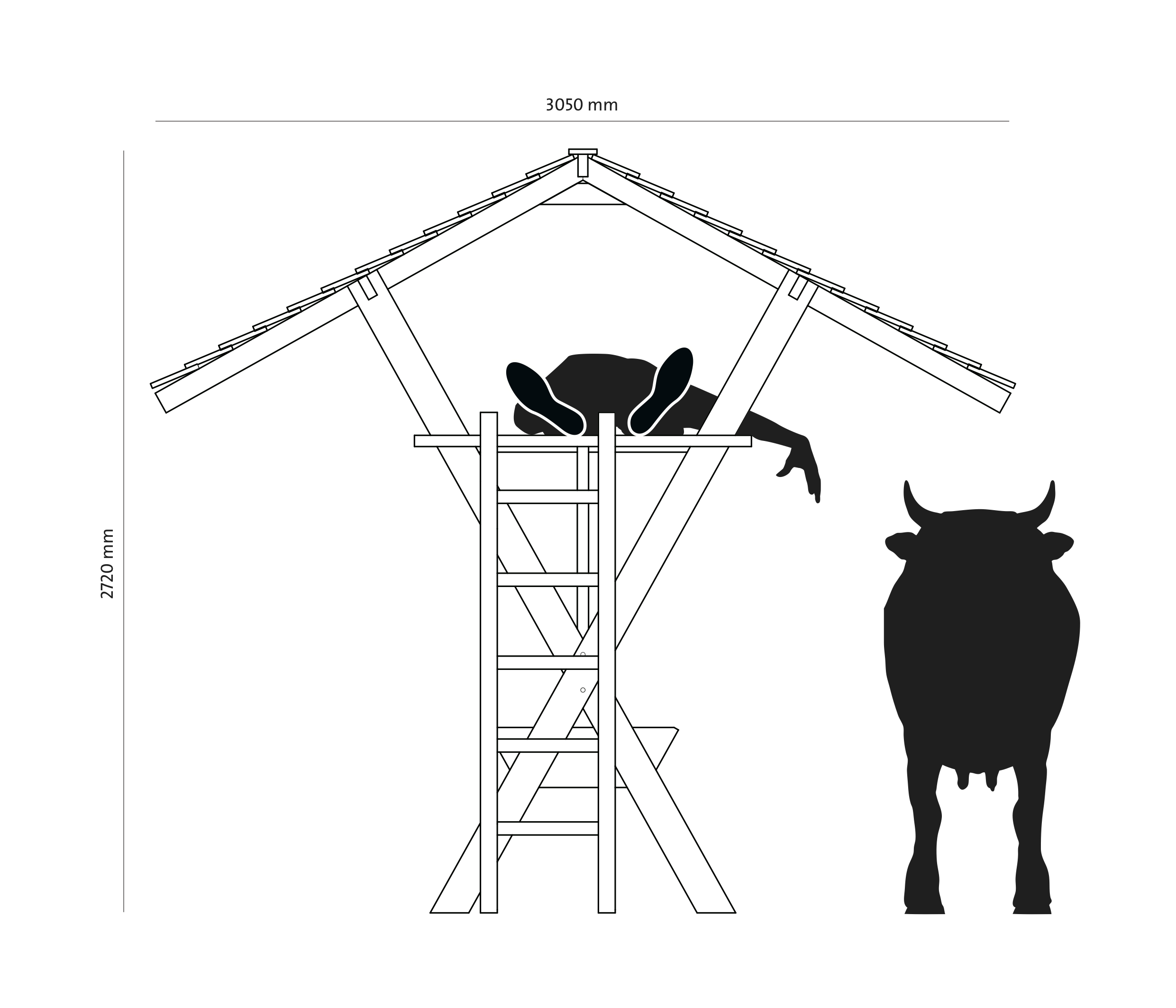 cow_1_zeichn